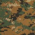 USMC MARPAT